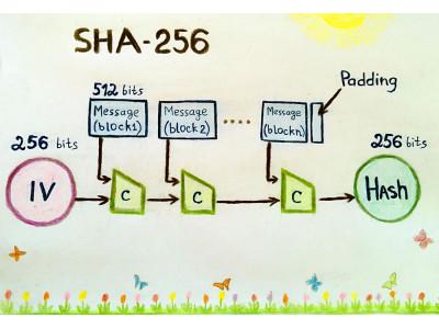 SHA-256 – основа для Bitcoin и не только
